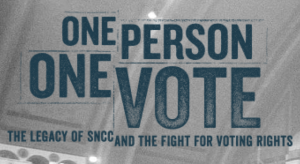 Screen Shot of One Person, One Vote logo